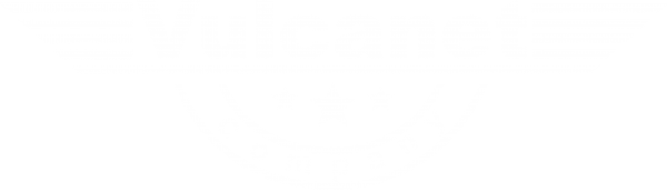 logo vulcanet